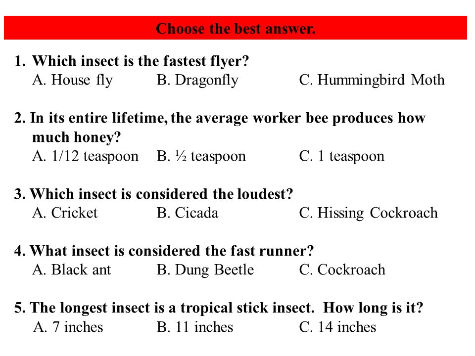 Choose the best answer. 1.Which insect is the fastest flyer.