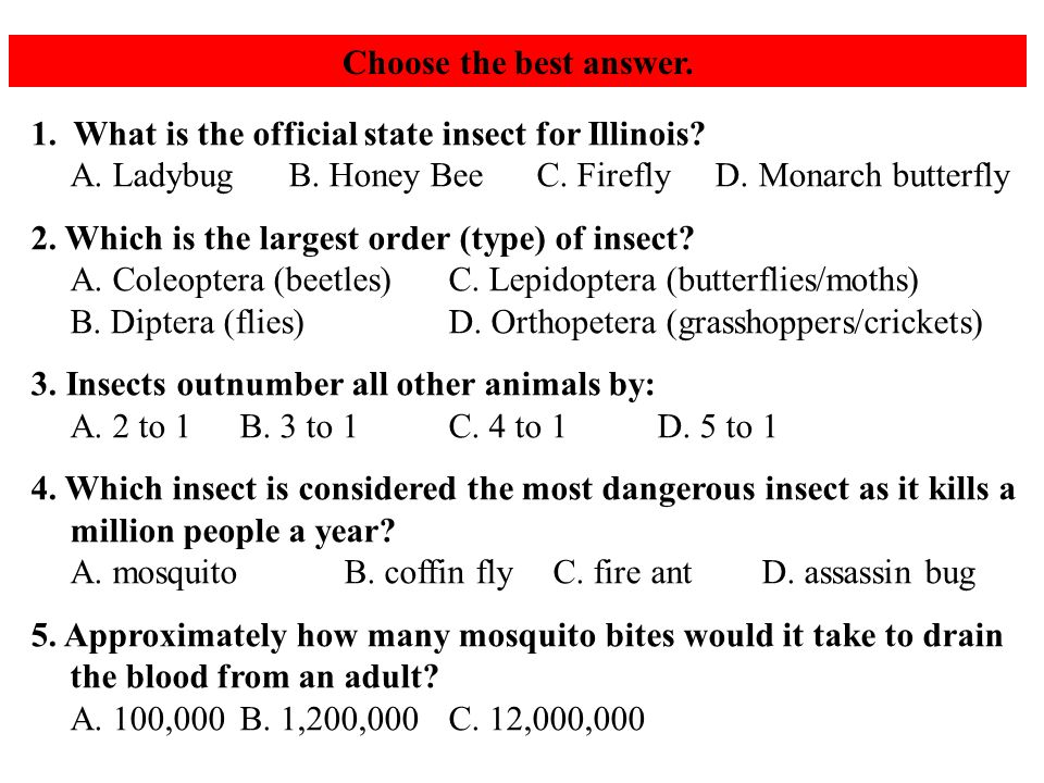 Choose the best answer. 1. What is the official state insect for Illinois.