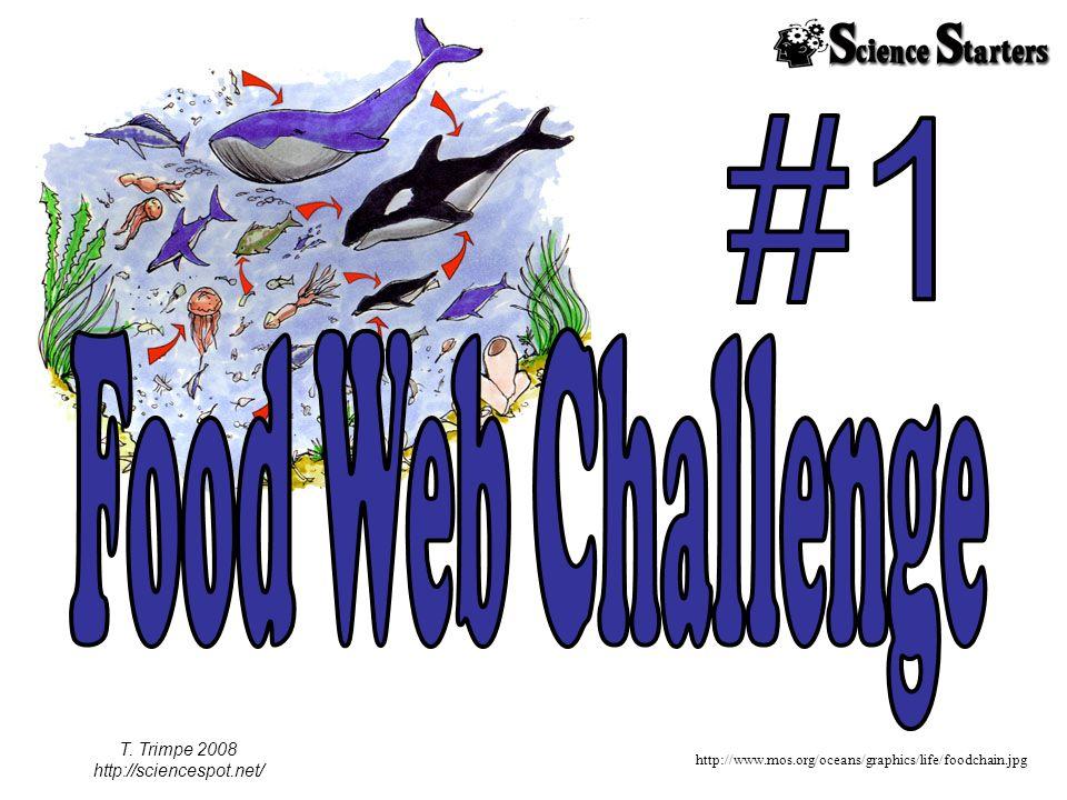http://www.mos.org/oceans/graphics/life/foodchain.jpg T. Trimpe 2008 http://sciencespot.net/