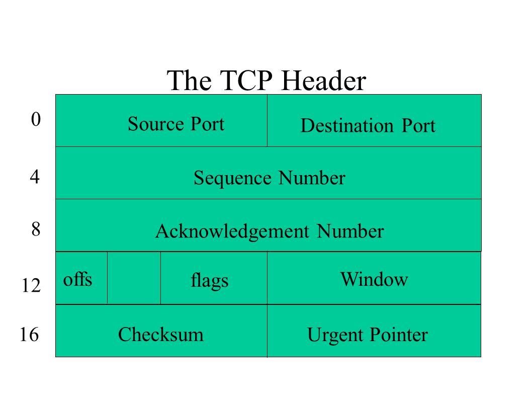 The TCP Header Source Port Destination Port Sequence Number Acknowledgement Number Window Checksum Urgent Pointer offs flags