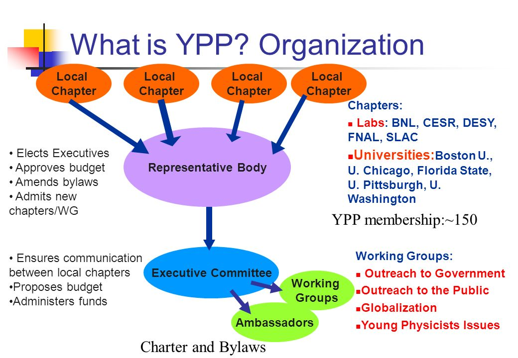 What is YPP? Organization Local Chapter Local Chapter Local Chapter Local Chapter Representative Body Executive Committee Working Groups Elects Execut