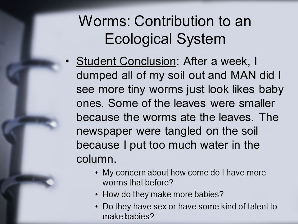 Worms: Contribution to an Ecological System Student Conclusion: After a week, I dumped all of my soil out and MAN did I see more tiny worms just look