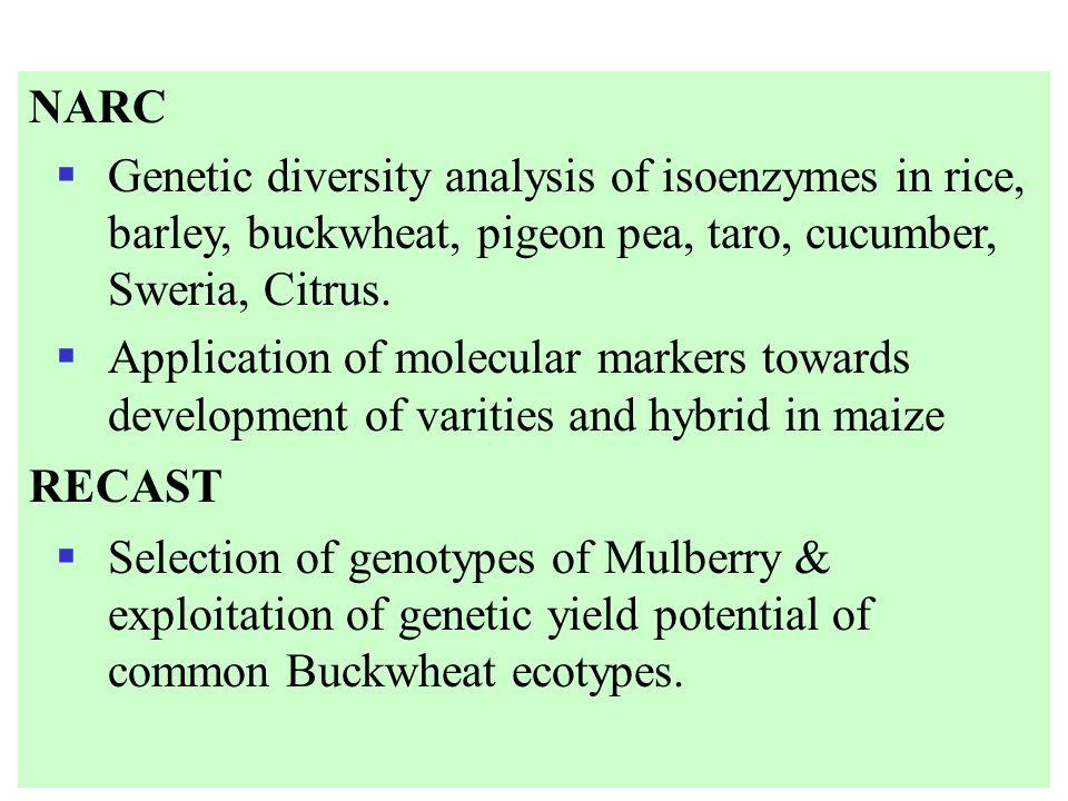 NARC Genetic diversity analysis of isoenzymes in rice, barley, buckwheat, pigeon pea, taro, cucumber, Sweria, Citrus. Application of molecular markers