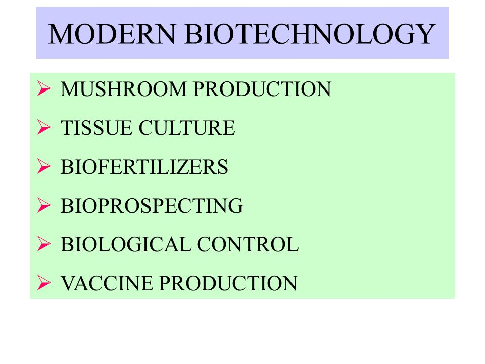CHALLENGES OF MODERN BIOTECHNOLOGY HEALTH RISKS POISED BY GMO CROPS POTENTIAL ENVIRONMETAL IMPACTS OF THE RELEASE OF GMOS LEADING TO SERIOUS CONSEQUENCES FOR THE BIODIVERSITY THAT MANY COMMUNITIES RELY ON FOR THEIR FOOD, LIVELIHOODS AND CULTURAL SURVIVAL
