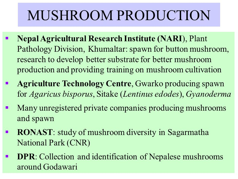 BUDGET OF OTHER INSTITUTIONS InstitutionsBudget per year Division of Agriculture Botany, NARC, Khumaltar $15,000 Biotechnology Laboratory of Department of Plant Resources, Thapathali and Godawari $10,000 Phytochemical and microbial screening at DPR $10,000