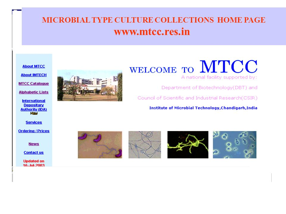 MICROBIAL TYPE CULTURE COLLECTIONS HOME PAGE www.mtcc.res.in
