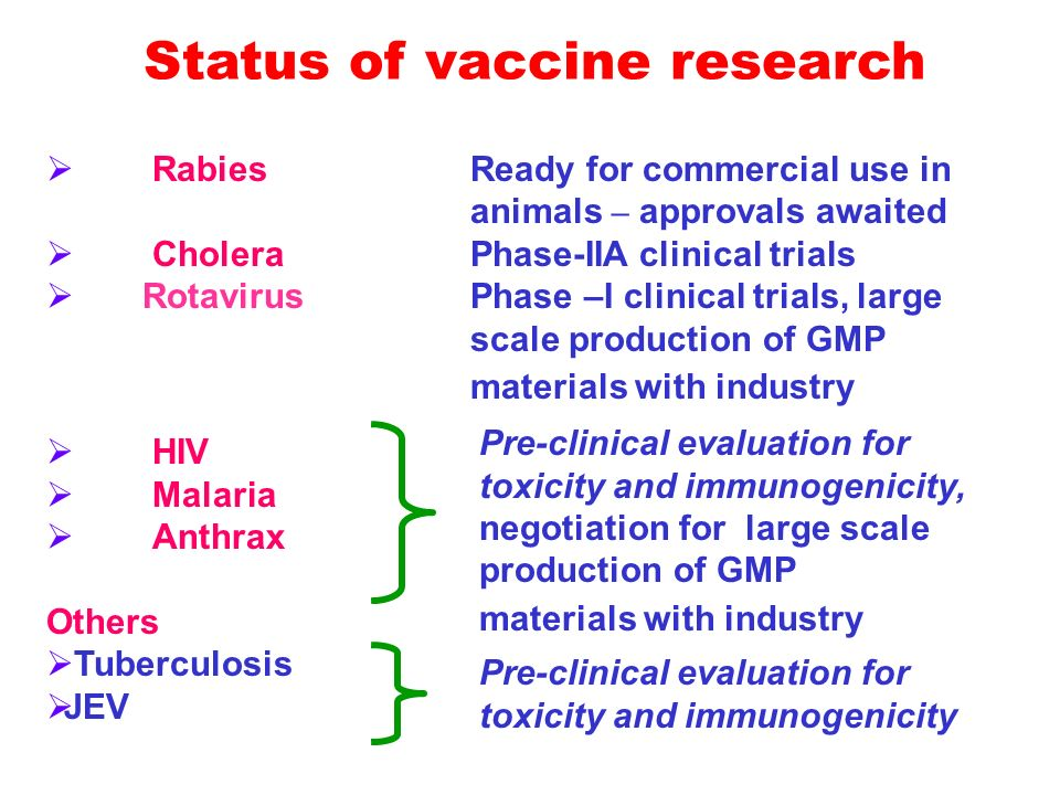 Rabies Ready for commercial use in animals – approvals awaited CholeraPhase-IIA clinical trials Rotavirus Phase –I clinical trials, large scale production of GMP materials with industry HIV Malaria Anthrax Others Tuberculosis JEV Pre-clinical evaluation for toxicity and immunogenicity, negotiation for large scale production of GMP materials with industry Pre-clinical evaluation for toxicity and immunogenicity Status of vaccine research