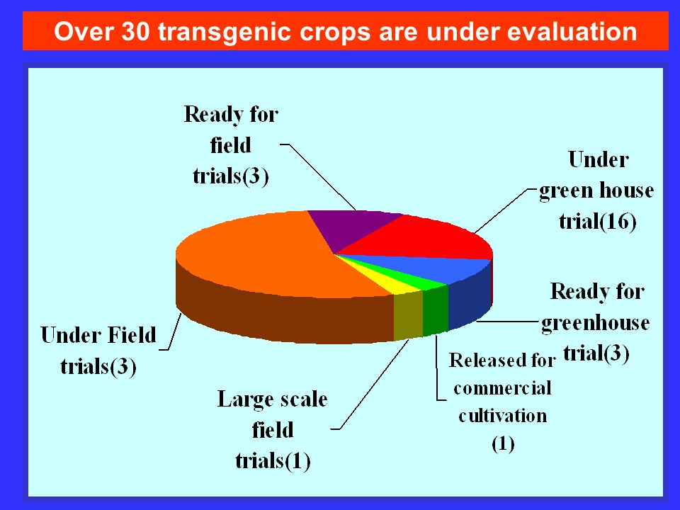 Over 30 transgenic crops are under evaluation