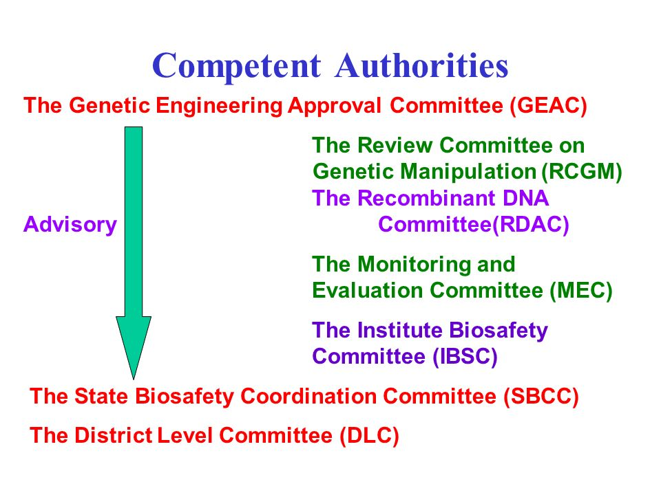Competent Authorities The Genetic Engineering Approval Committee (GEAC) The Review Committee on Genetic Manipulation (RCGM) The Recombinant DNA Adviso