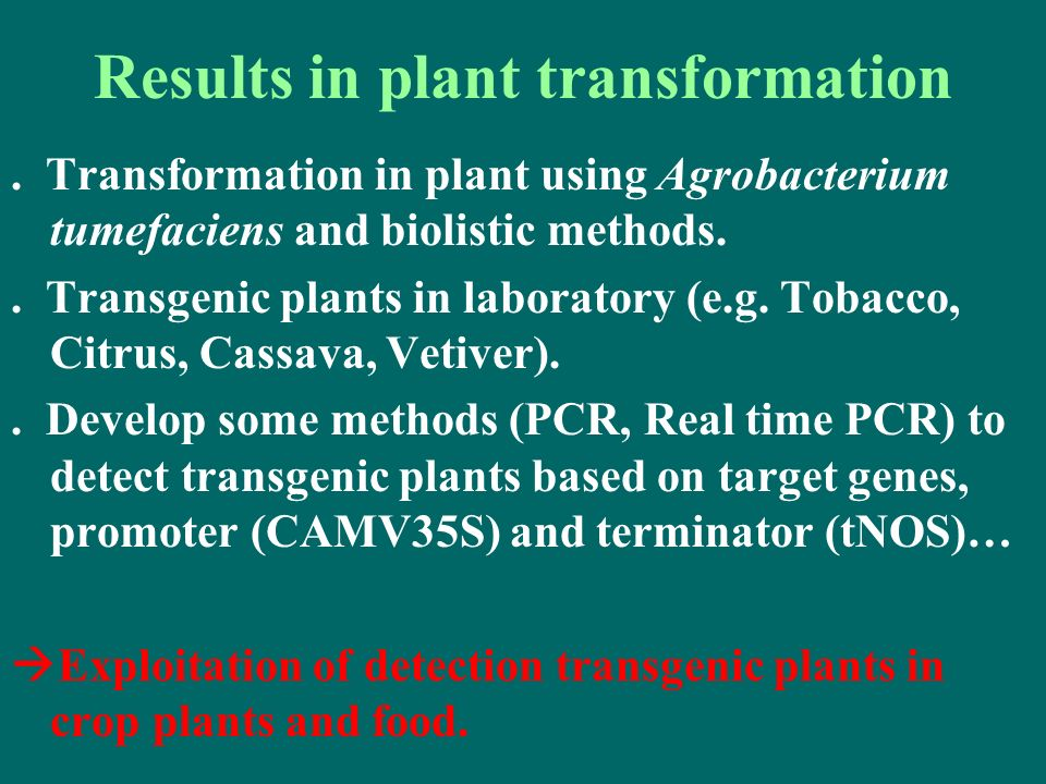 . Transformation in plant using Agrobacterium tumefaciens and biolistic methods.. Transgenic plants in laboratory (e.g. Tobacco, Citrus, Cassava, Veti