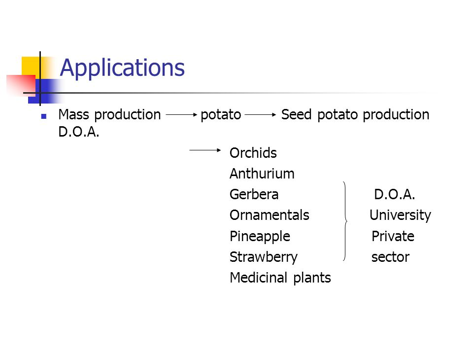 Virus eliminationMicrografting (citrus) Meristem culture Potato Banana In vitro conservation Root & Tuber crops D.O.A.