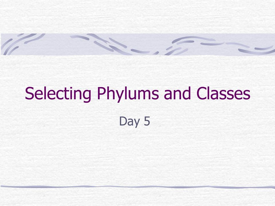 Selecting Phylums and Classes Day 5