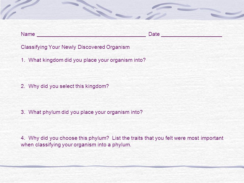 Name ____________________________________ Date ____________________ Classifying Your Newly Discovered Organism 1. What kingdom did you place your orga