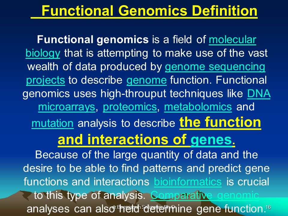 dr.Boenjamin Setiawan, Ph.D.16 Functional Genomics Definition Functional genomics is a field of molecular biology that is attempting to make use of th