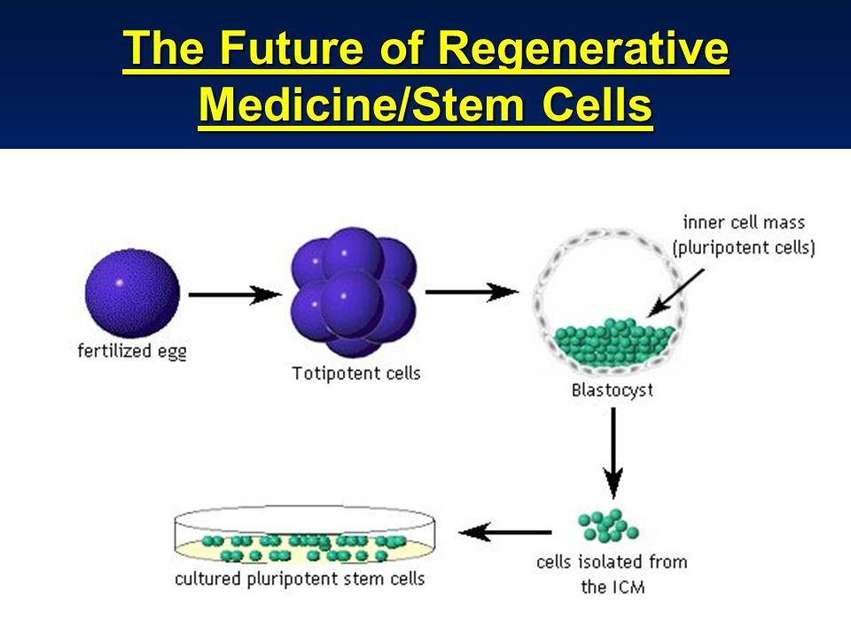 dr.Boenjamin Setiawan, Ph.D.39 The Future of Regenerative Medicine/Stem Cells