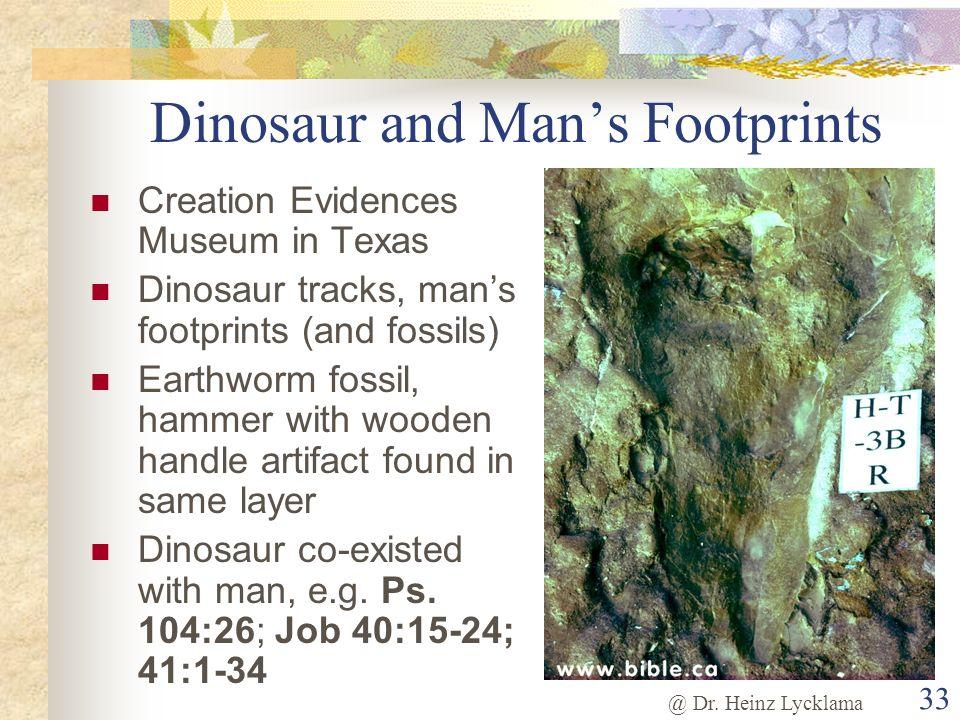 @ Dr. Heinz Lycklama 33 Dinosaur and Mans Footprints Creation Evidences Museum in Texas Dinosaur tracks, mans footprints (and fossils) Earthworm fossi