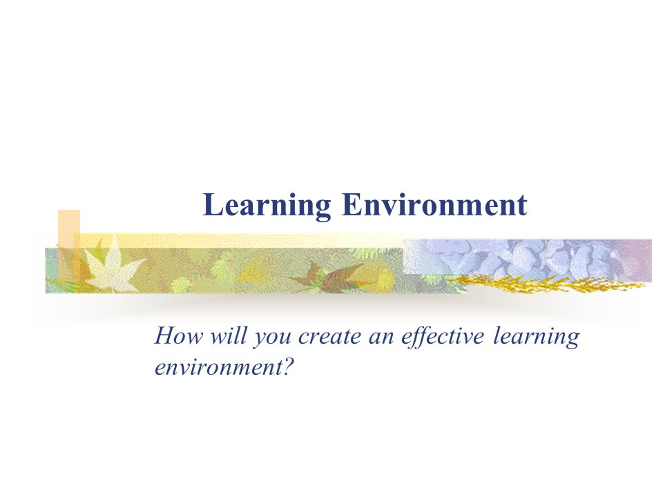 Learning Environment – Introduction The highest stake of all is our ability to help children realize their full potential.