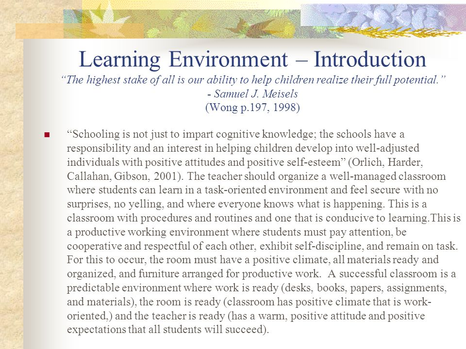 Learning Environment – Utilizing My Instructional Strategies Students know what is expected Teacher holds positive expectations for all students, which are set high, consistently reinforced expectations for behavior and academic performance.