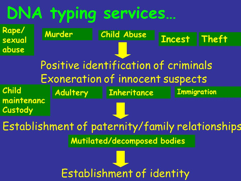 Murder Rape/ sexual abuse Child Abuse Theft Child maintenanc Custody Incest InheritanceAdultery DNA typing services… Positive identification of crimin
