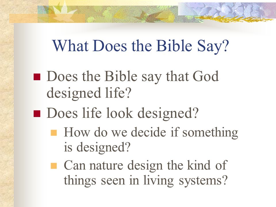 What Does the Bible Say? Does the Bible say that God designed life? Does life look designed? How do we decide if something is designed? Can nature des