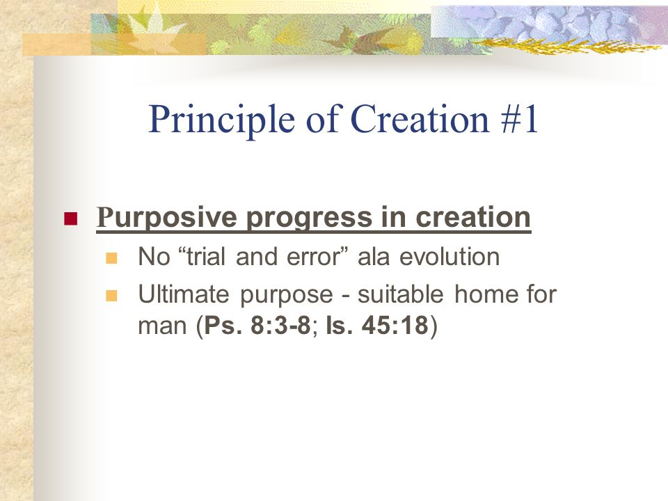 Principle of Creation #1 P urposive progress in creation No trial and error ala evolution Ultimate purpose - suitable home for man (Ps. 8:3-8; Is. 45: