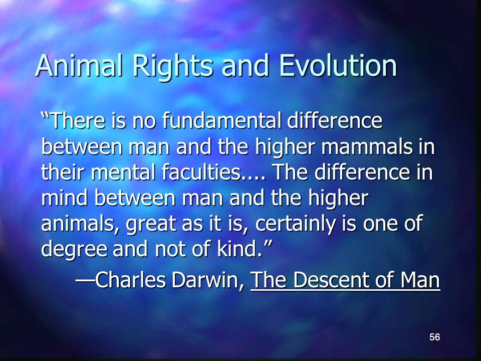 56 Animal Rights and Evolution There is no fundamental difference between man and the higher mammals in their mental faculties....