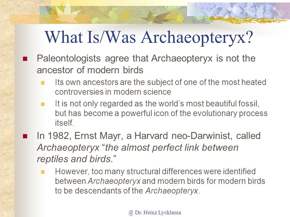 @ Dr.Heinz Lycklama What Is/Was Archaeopteryx.