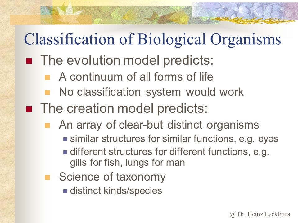 @ Dr. Heinz Lycklama Classification of Biological Organisms The evolution model predicts: A continuum of all forms of life No classification system wo