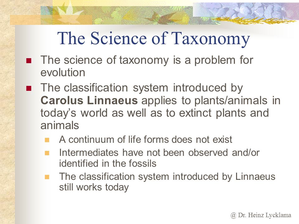 @ Dr. Heinz Lycklama The Science of Taxonomy The science of taxonomy is a problem for evolution The classification system introduced by Carolus Linnae
