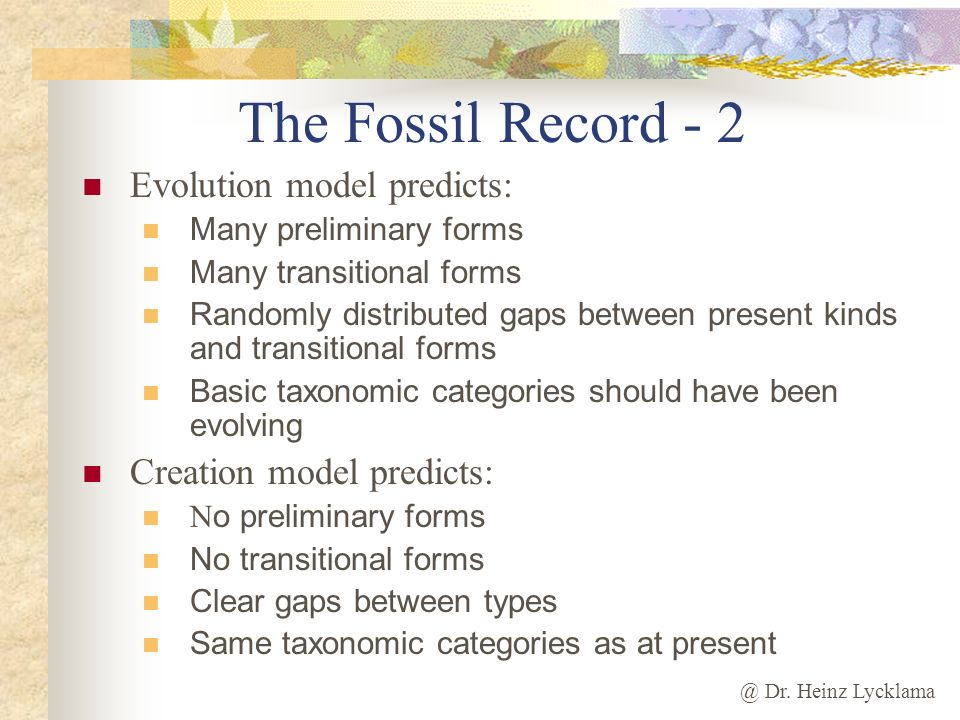 @ Dr. Heinz Lycklama The Fossil Record - 2 Evolution model predicts: Many preliminary forms Many transitional forms Randomly distributed gaps between