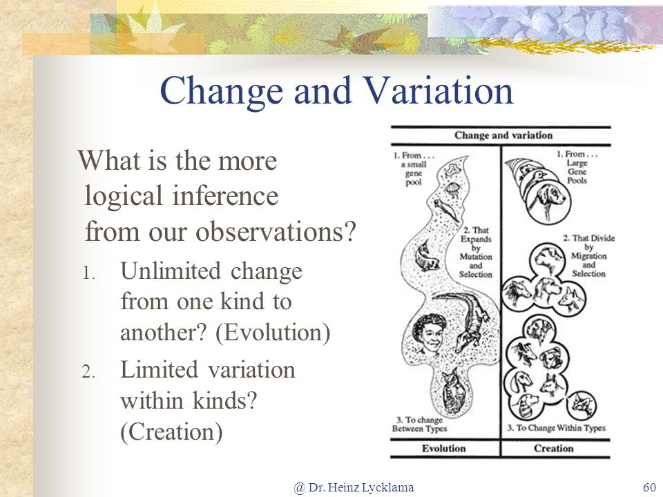 @ Dr. Heinz Lycklama60 Change and Variation What is the more logical inference from our observations? 1. Unlimited change from one kind to another? (E