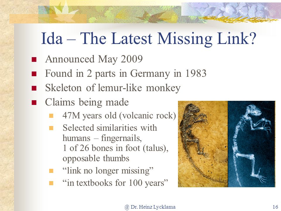 @ Dr. Heinz Lycklama16 Ida – The Latest Missing Link? Announced May 2009 Found in 2 parts in Germany in 1983 Skeleton of lemur-like monkey Claims bein