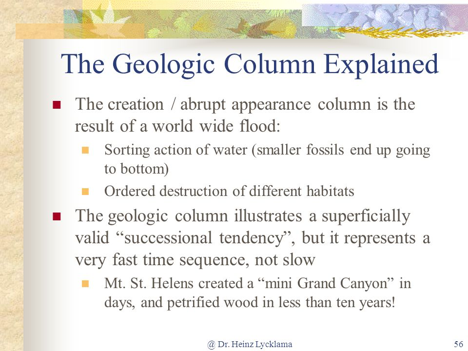 @ Dr. Heinz Lycklama56 The Geologic Column Explained The creation / abrupt appearance column is the result of a world wide flood: Sorting action of wa