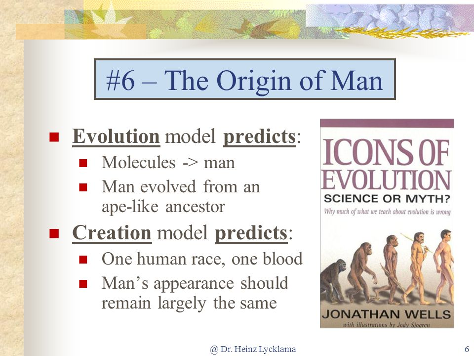 @ Dr. Heinz Lycklama6 #6 – The Origin of Man Evolution model predicts: Molecules -> man Man evolved from an ape-like ancestor Creation model predicts: