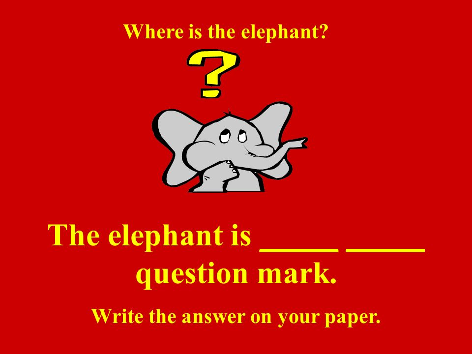 The elephant is _____ _____ question mark. Write the answer on your paper.