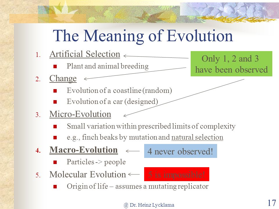 The Meaning of Evolution 1. Artificial Selection Plant and animal breeding 2. Change Evolution of a coastline (random) Evolution of a car (designed) 3