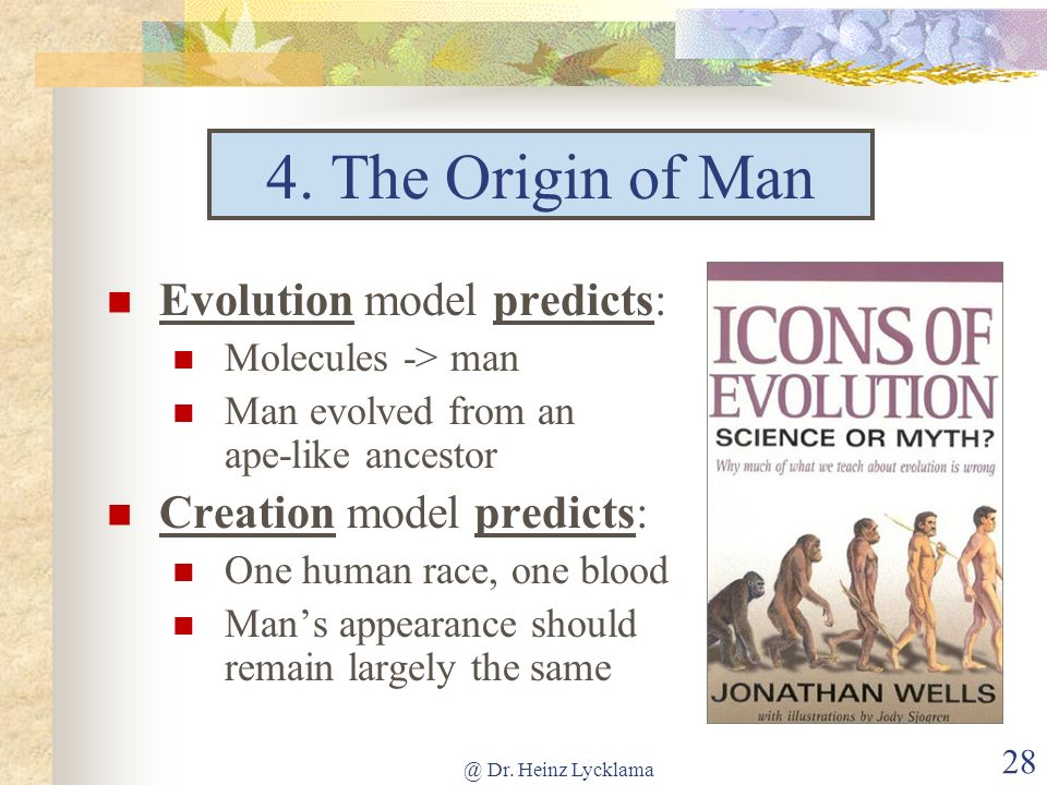 @ Dr. Heinz Lycklama 28 4. The Origin of Man Evolution model predicts: Molecules -> man Man evolved from an ape-like ancestor Creation model predicts: