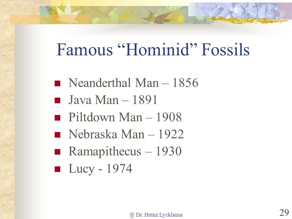 @ Dr. Heinz Lycklama 29 Famous Hominid Fossils Neanderthal Man – 1856 Java Man – 1891 Piltdown Man – 1908 Nebraska Man – 1922 Ramapithecus – 1930 Lucy