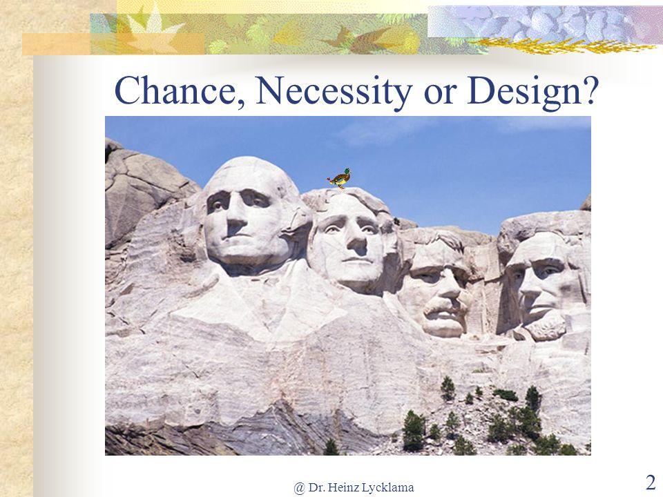 @ Dr. Heinz Lycklama 2 Chance, Necessity or Design?