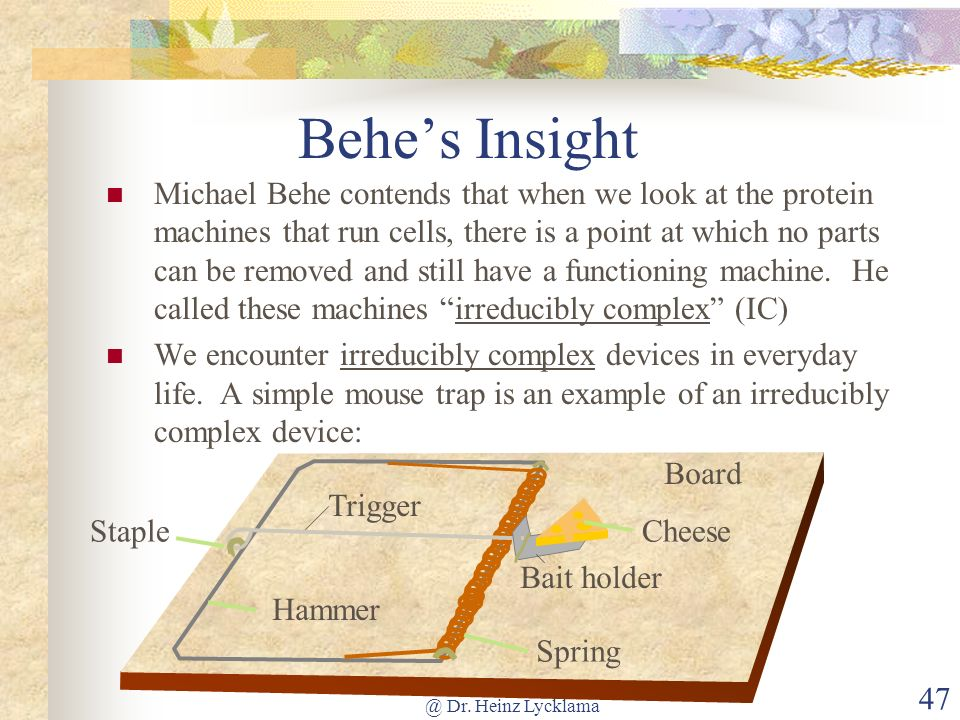 @ Dr. Heinz Lycklama 47 Behes Insight Michael Behe contends that when we look at the protein machines that run cells, there is a point at which no par