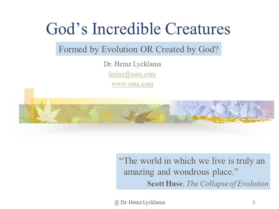 @ Dr. Heinz Lycklama1 Gods Incredible Creatures Dr.