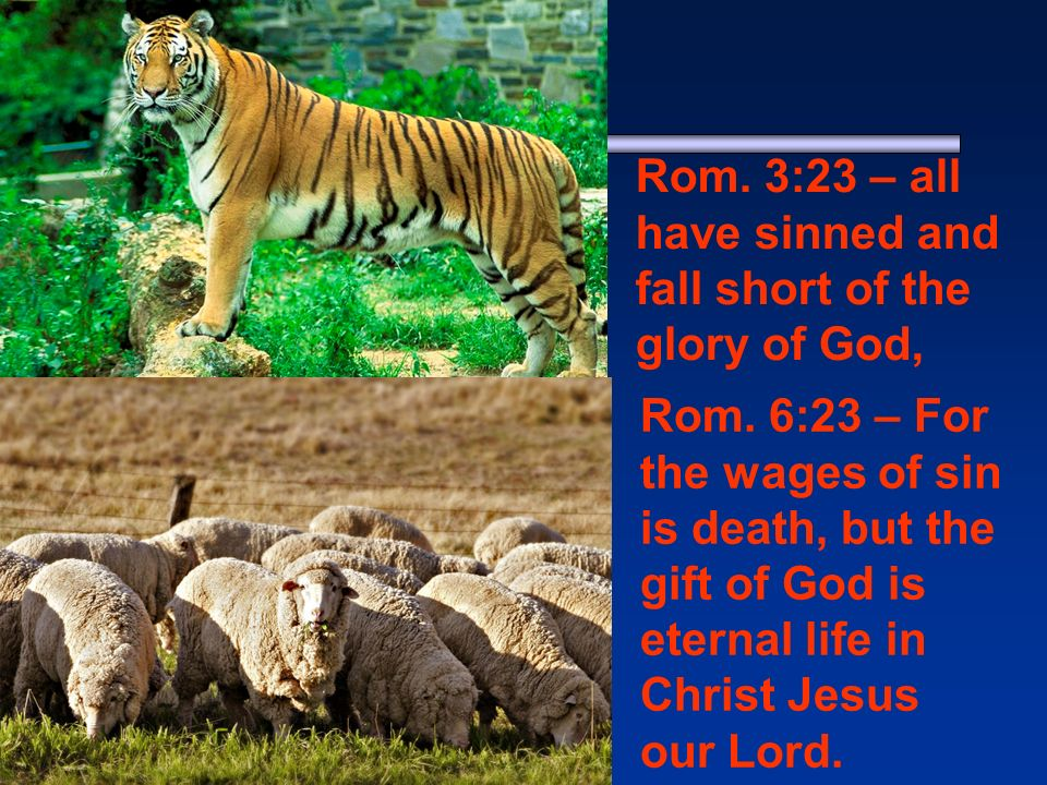 1 - Jasper Rom. 3:23 – all have sinned and fall short of the glory of God, Rom.