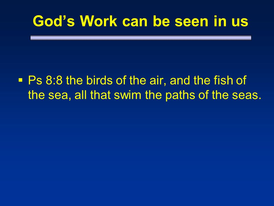 Gods Work can be seen in us Ps 8:8 the birds of the air, and the fish of the sea, all that swim the paths of the seas.