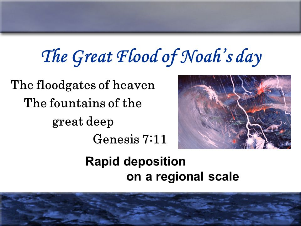 The Great Flood of Noahs day The floodgates of heaven The fountains of the great deep Genesis 7:11 Rapid deposition on a regional scale