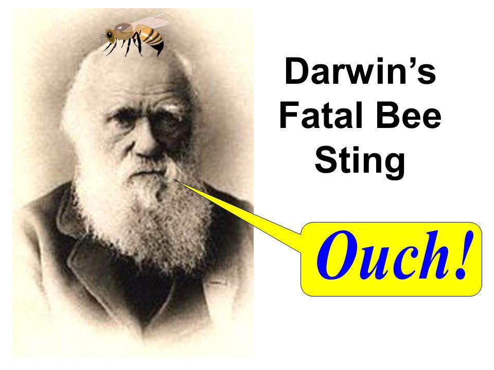 Darwins Fatal Bee Sting