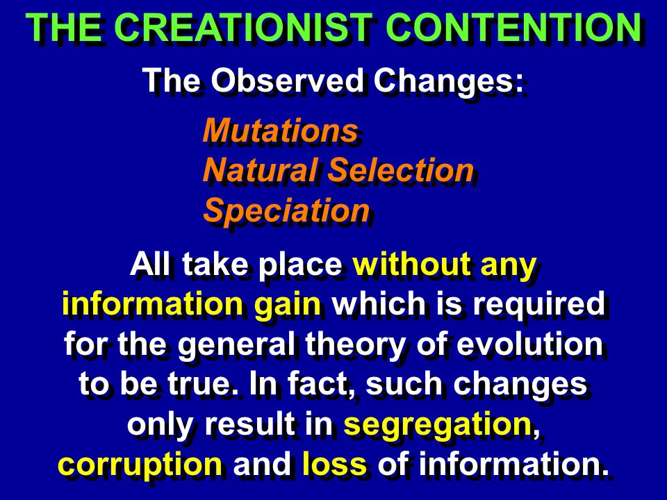 THE CREATIONIST CONTENTION The Observed Changes: Mutations Natural Selection Speciation Mutations Natural Selection Speciation All take place without any information gain which is required for the general theory of evolution to be true.