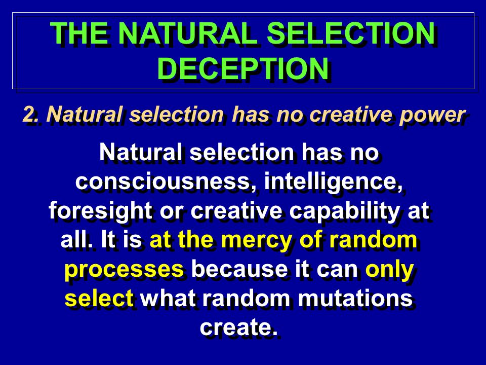 THE NATURAL SELECTION DECEPTION 2.Natural selection has no creative power Natural selection has no consciousness, intelligence, foresight or creative capability at all.
