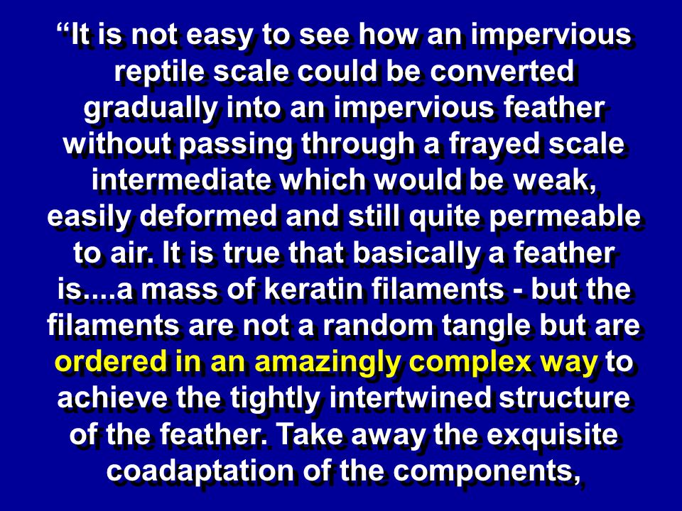 It is not easy to see how an impervious reptile scale could be converted gradually into an impervious feather without passing through a frayed scale i