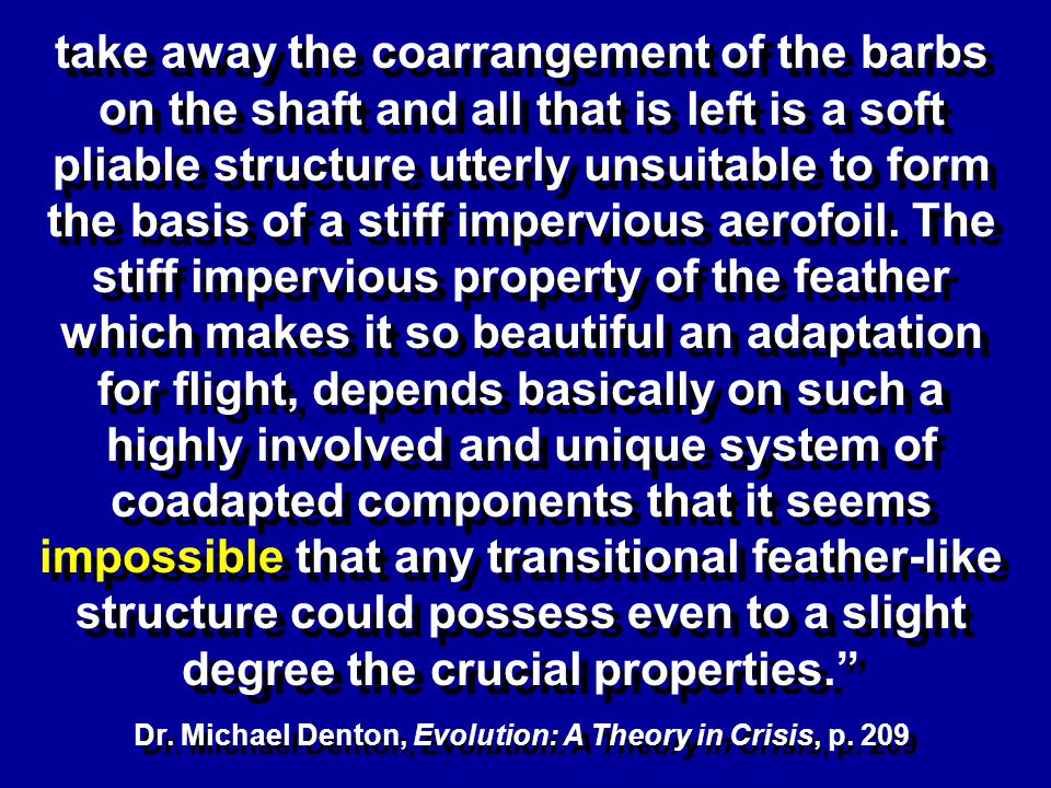 take away the coarrangement of the barbs on the shaft and all that is left is a soft pliable structure utterly unsuitable to form the basis of a stiff