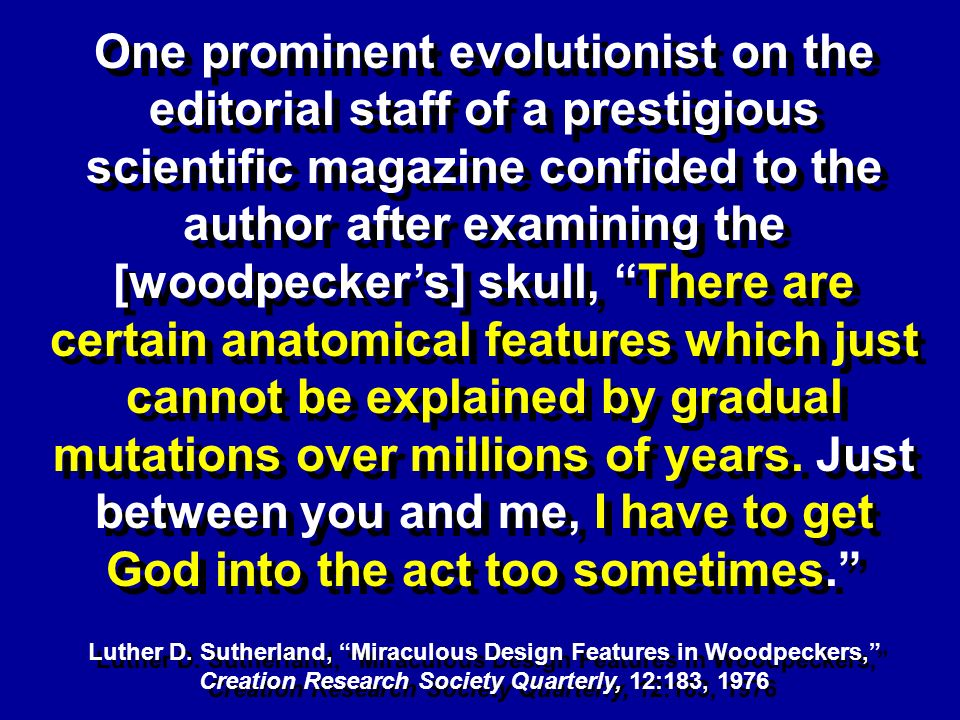 One prominent evolutionist on the editorial staff of a prestigious scientific magazine confided to the author after examining the [woodpeckers] skull,